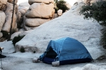 Camped in Joshua Tree National Park, CA
